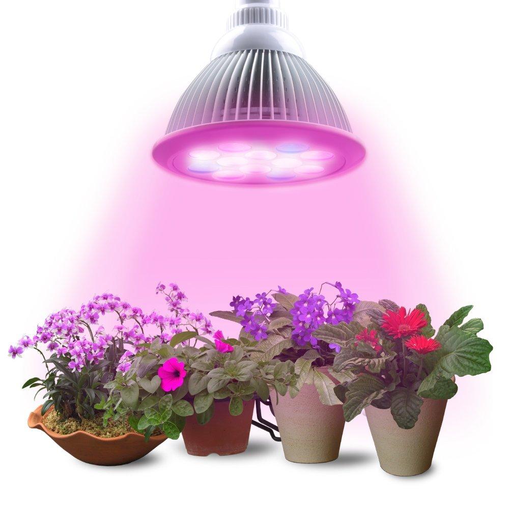Lampe Pour Jardin D Int 233 Rieur Prix Avis Et Comparatif